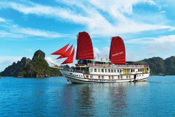 Oasis bay cruise
